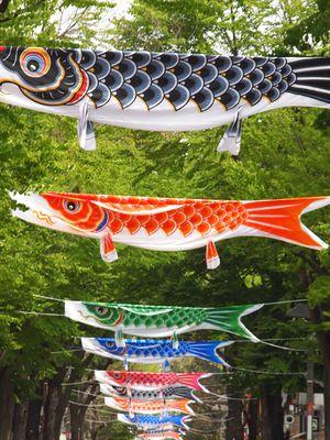 伊勢佐木モールの鯉のぼり
